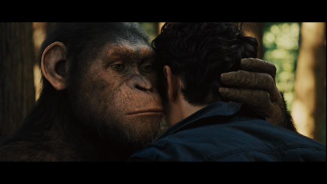 La planète des singes-les origines-avant-scene-cinema-617-kingkong