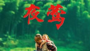 Le-Promeneur-d-oiseau-affiche-entretien-philippe-muyl-dvd-avant-scene-cinema-618